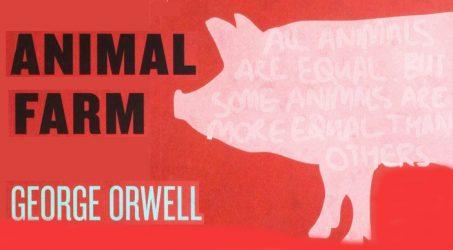 Animal Farm New Words – William, Grade 9